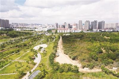 府园路绿道工程开工了 工程将在明年3月份完工